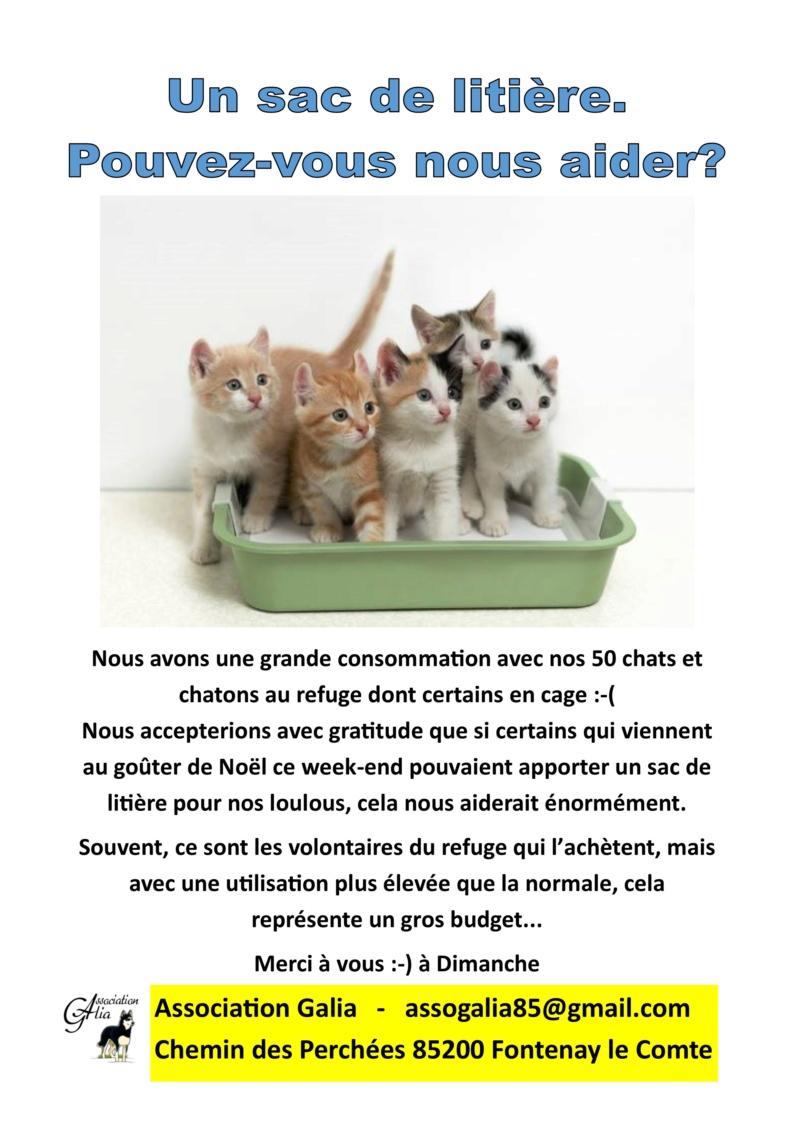 GOUTER DE NOEL : Dimanche 16 Dédembre 2018 Cat_li10