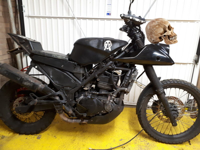 I'm re-styling the front end of my survival bike. Help me weigh up my options.... 11111110