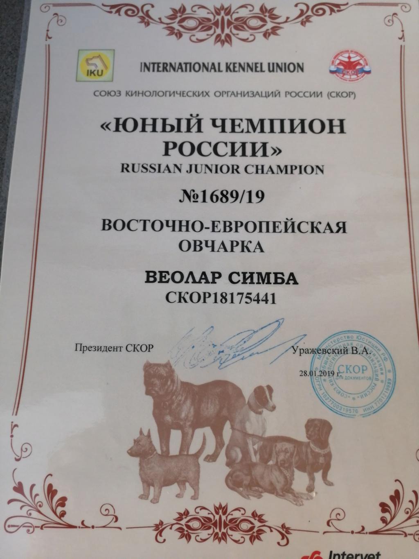 ВОСТОЧНО-ЕВРОПЕЙСКАЯ ОВЧАРКА ВЕОЛАР СИМБА - Страница 6 Img_2025