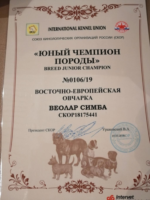 ВОСТОЧНО-ЕВРОПЕЙСКАЯ ОВЧАРКА ВЕОЛАР СИМБА - Страница 6 Img_2027