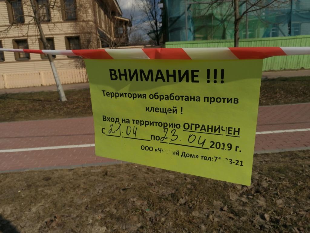 ВОСТОЧНО-ЕВРОПЕЙСКАЯ ОВЧАРКА ВЕОЛАР СИМБА - Страница 7 Img_2039