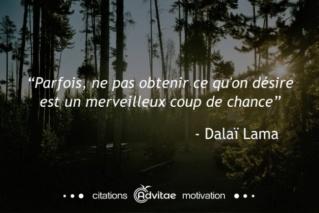 Des citations... juste pour se faire du bien  - Page 3 Dalai_10