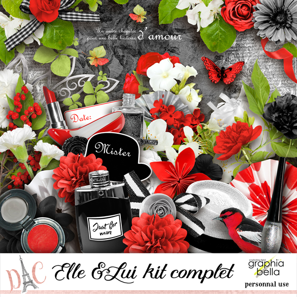 Elle et lui kit complet / 20 mai / 20th of May Gbe_el10