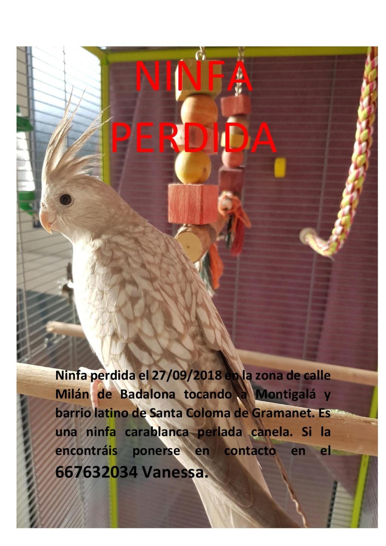 NINFA PERDIDA EN BADALONA (Barcelona) Cartel10