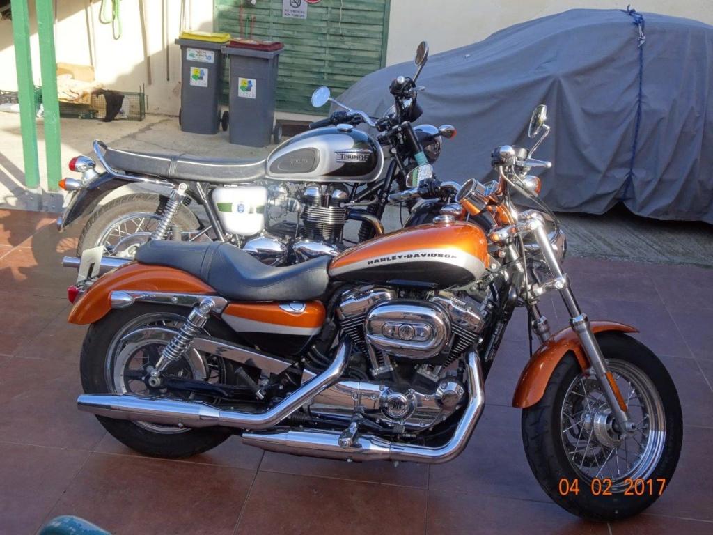 combien sommes nous en 1200 Sportster sur Passion-Harley - Page 35 1a11