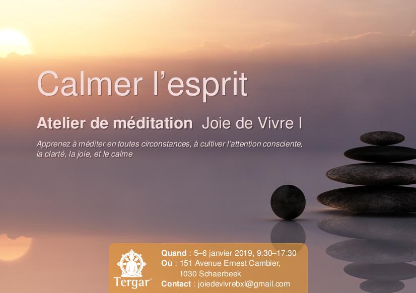 méditation - Atelier de méditation « Joie de Vivre I » Jol20110