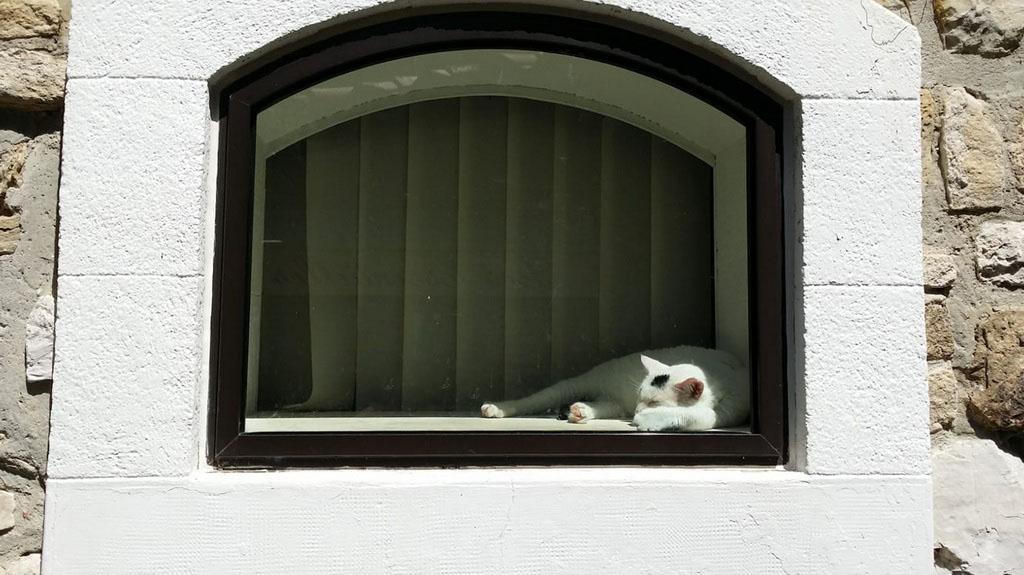 [Fil ouvert ] Fenêtres, volets, ouvertures... - Page 11 Le_cha11