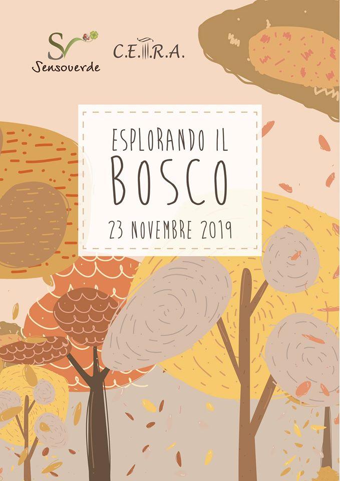 Esplorando il bosco Bosco_10