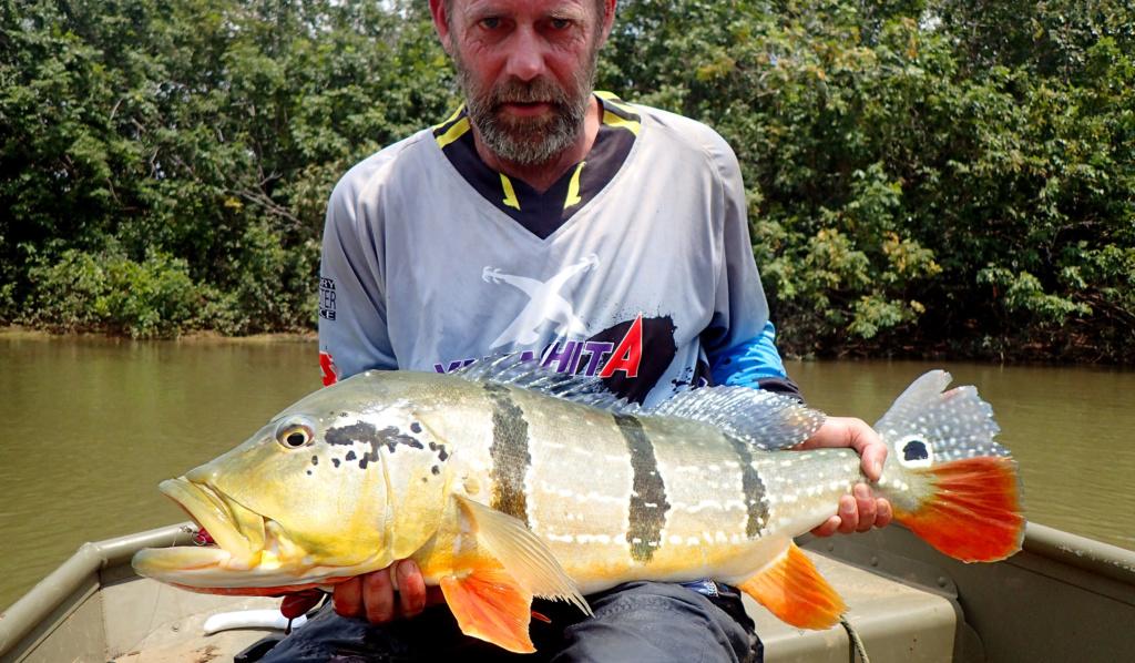 Pêche sportive en Colombie Peacoc10