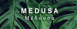 [Kitten search] Duistere liefdesbaby's V2 Medusa13