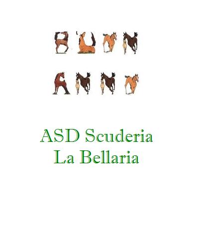 ASD Scuderia La Bellaria (Novi Ligure, AL) - Pagina 2 Buon_a10