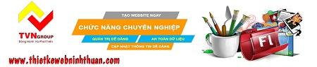 Cty thiết kế website chuyên nghiệp tại phan rang ninh thuận Web310