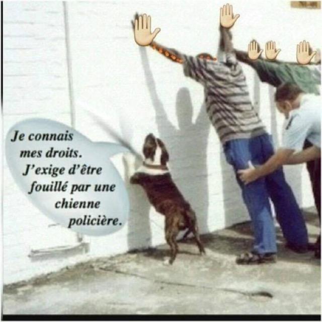 Humour et autres co..eries - Page 12 3098ae10