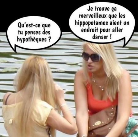 Humour et autres co..eries - Page 3 Dae79a10