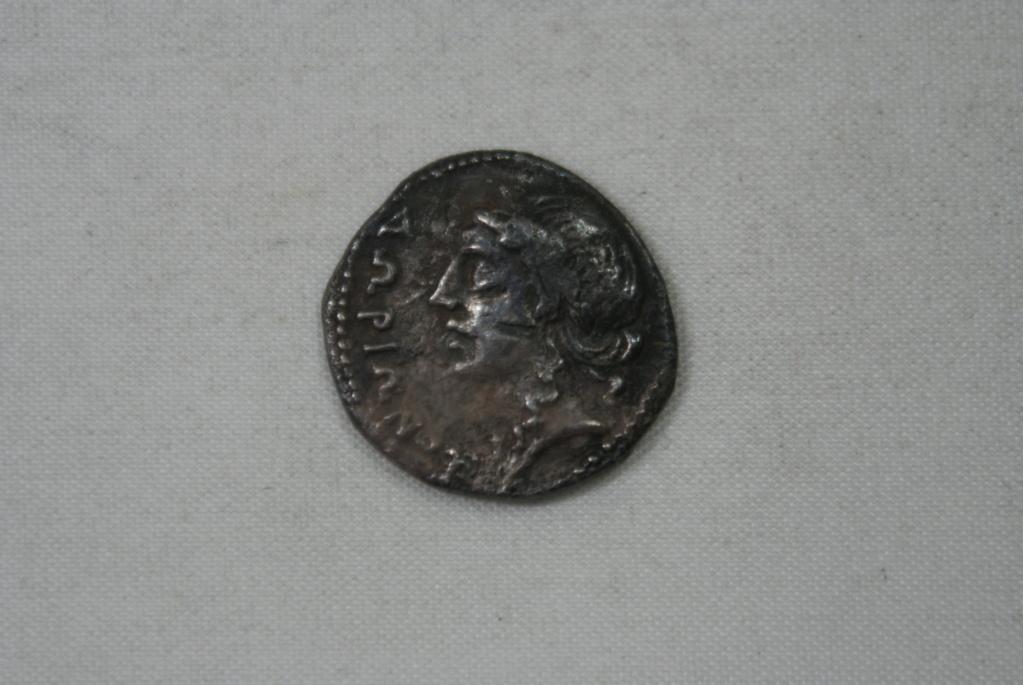 Drachme grecque d'Illyrie pour la cité d'Apollonia ... Dsc07712