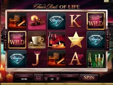 Microgaming casino game : The Finer Reels of Life