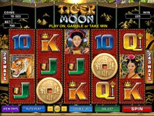 Microgaming casino game : Tiger Moon