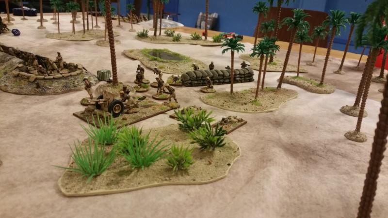 BoltAction Désert WWII non loin de Bir Hakeim 20190541