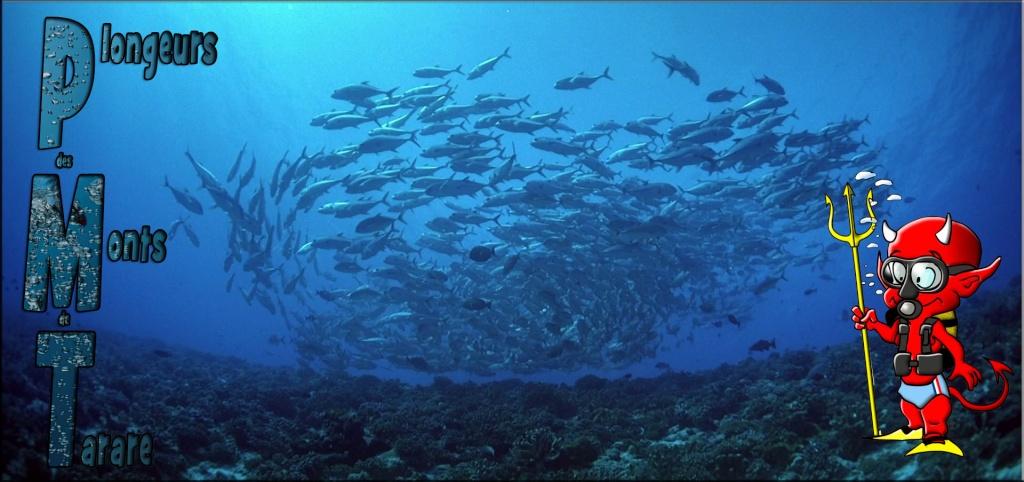 Plongeurs des Monts de Tarare