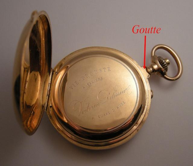 La belle gougoutte Dscn9510
