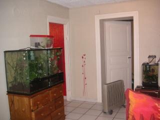 mon salon de terras Pict0015
