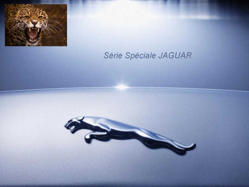 Rallye du Vexin - Page 2 Jaguar10