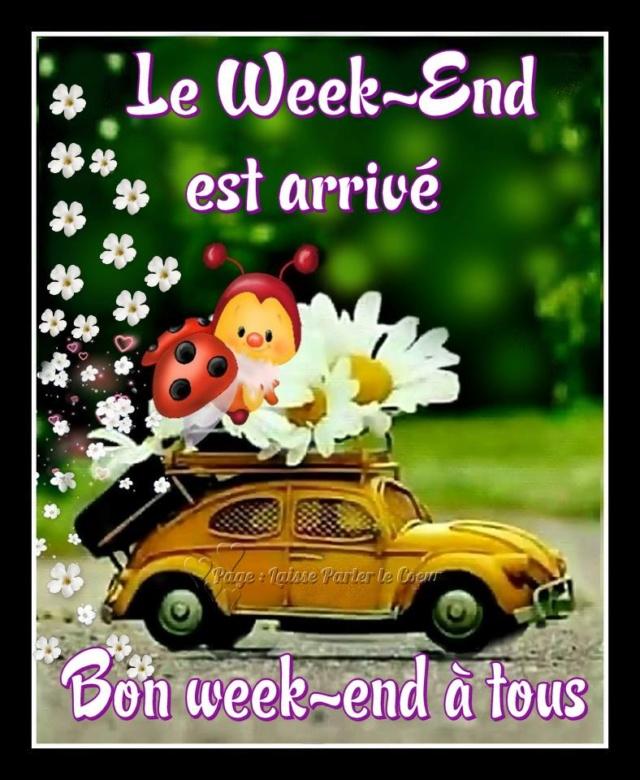 Ici on se dit bonjour  - Page 40 Bon-we16