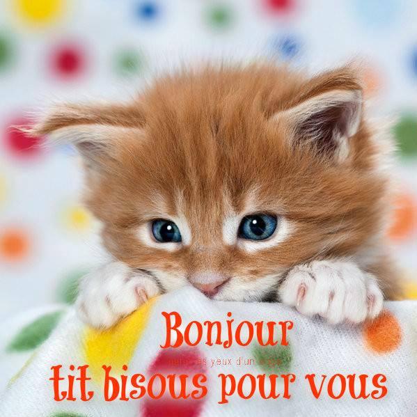 Ici on se dit bonjour  - Page 39 Bonjou15