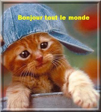 Ici on se dit bonjour  - Page 25 Bonjou24