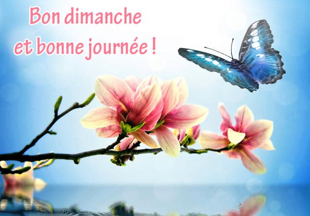 Ici on se dit bonjour  - Page 12 Carte-16