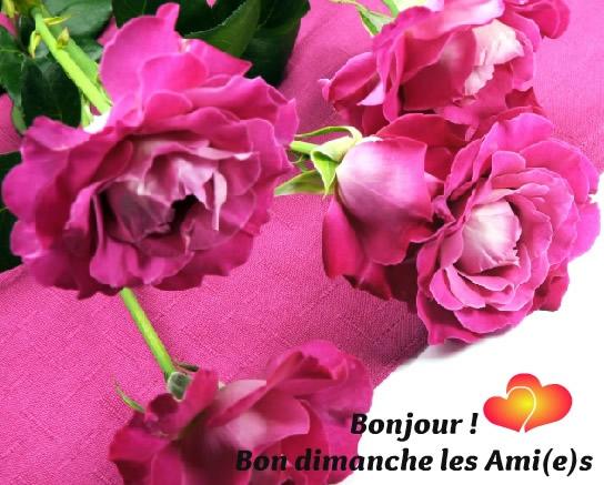 Ici on se dit bonjour  - Page 40 Dimanc12