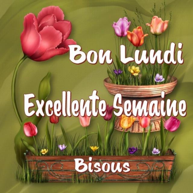 Ici on se dit bonjour  - Page 39 Lundi_11