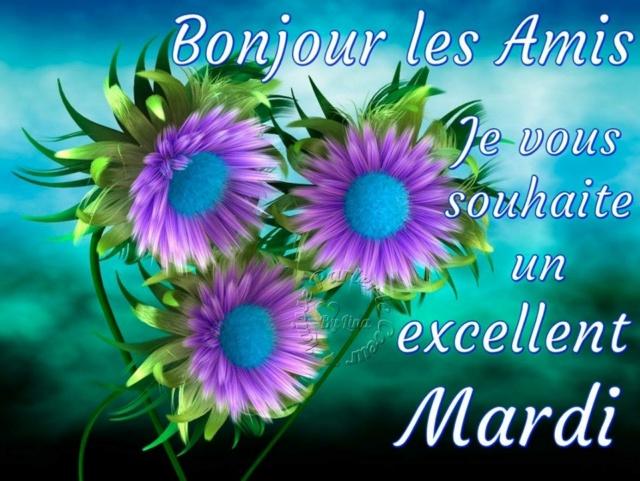 Ici on se dit bonjour  - Page 12 Mardi_14