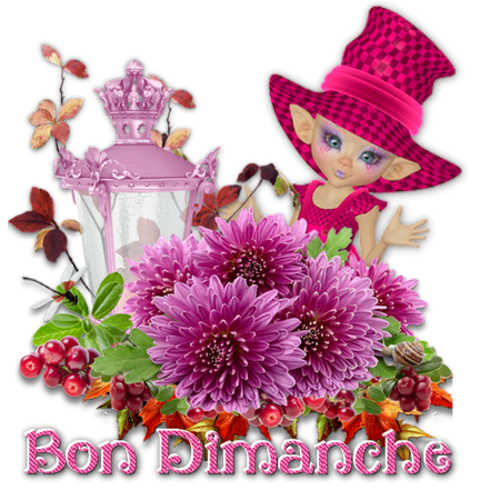 Ici on se dit bonjour  - Page 25 Ob_ac811