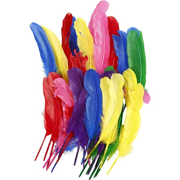 Jeu du multicolore - Page 11 Plume-10