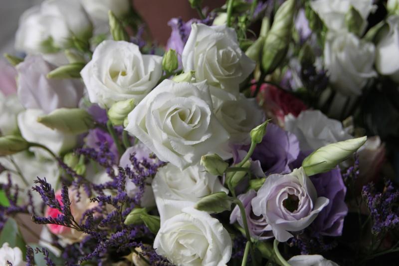 Dans un bouquet de fleurs Img_9313