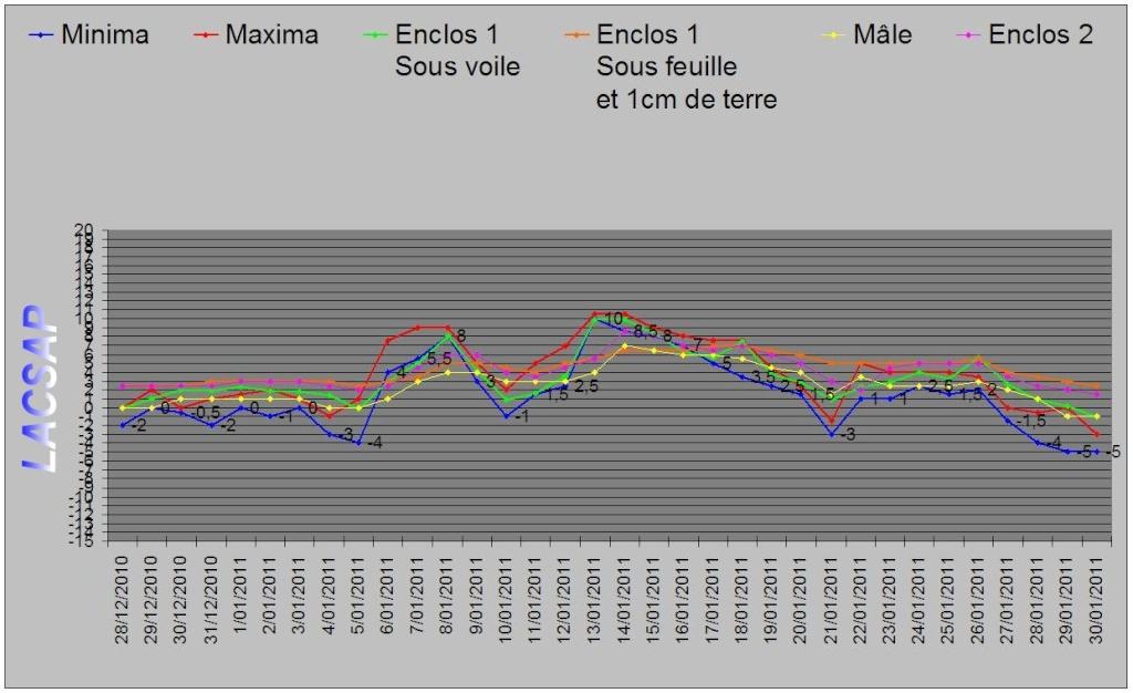 Protection hivernales en BEL et relevé température 2010-2011 Graphi11