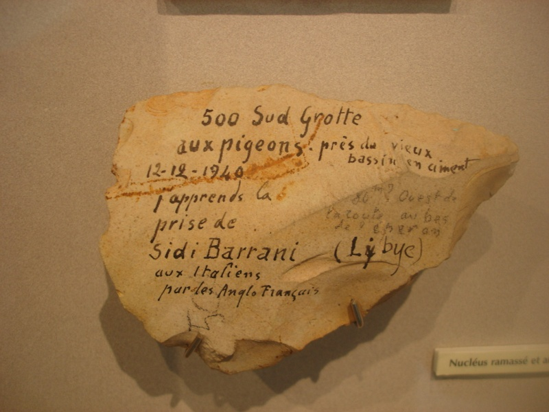 Musée de Préhistoire Libanaise 8410