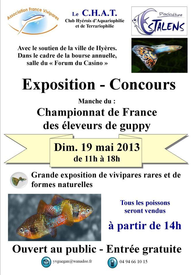 concours de guppy à Hyères le 19 mais 2013 Hyeres10