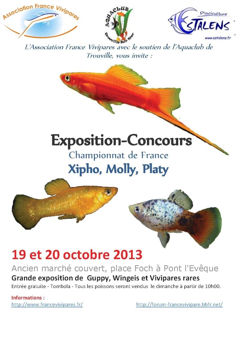 Du 19 au 20 Octobre 2013 - Championnat de France à Pont l'Evêque (Trio & Couple guppy) Ple20111
