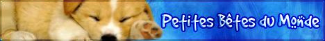 Petites Bêtes du Monde - Page 2 Logo_210