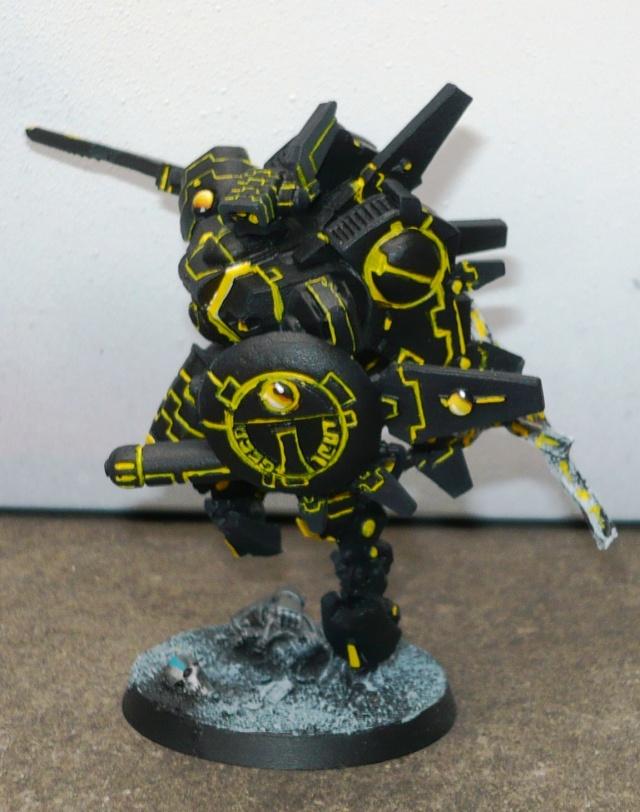 mon empire Tau P1020710