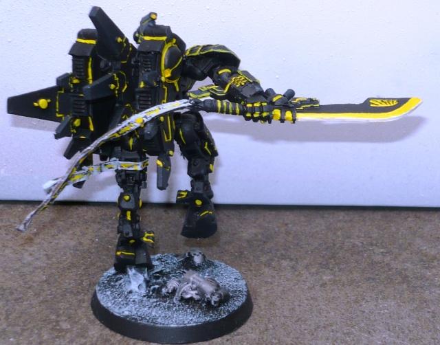 mon empire Tau P1020713