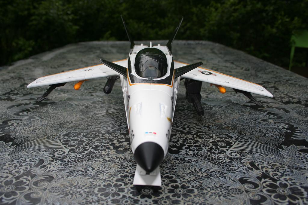 X-Striker 30 : Airplane ! Flying High Img_8951