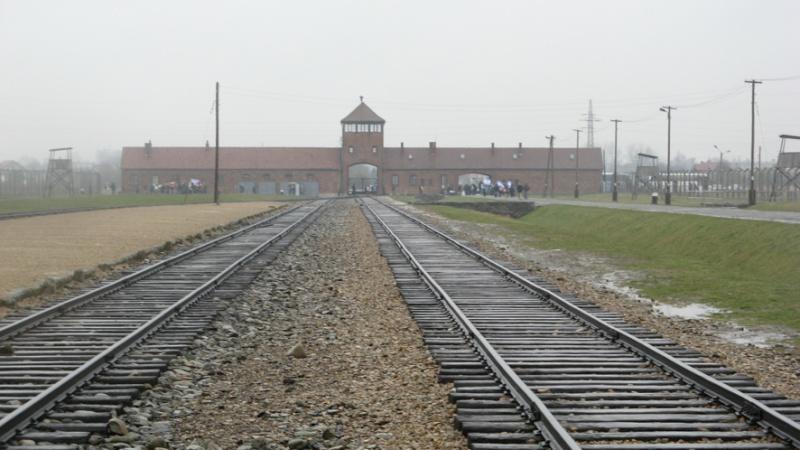 Why we fight: Auschwitz-Birkenau Voyage10
