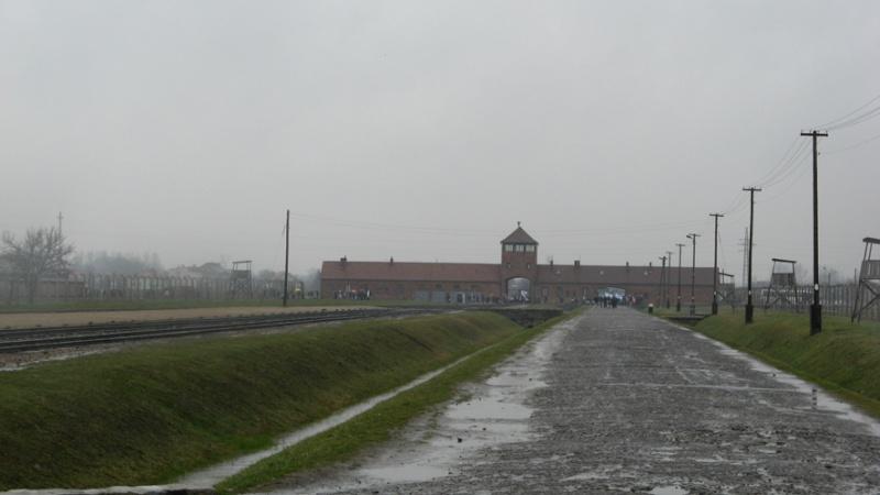 Why we fight: Auschwitz-Birkenau Voyage11