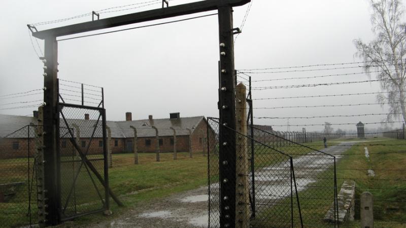 Why we fight: Auschwitz-Birkenau Voyage14
