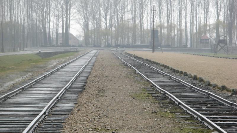 Why we fight: Auschwitz-Birkenau Voyage15