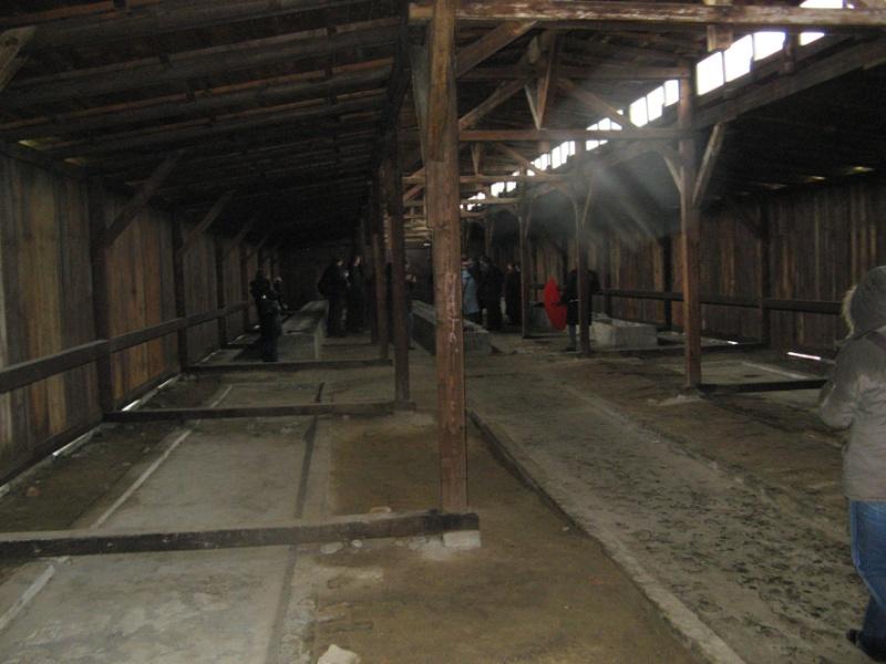 Why we fight: Auschwitz-Birkenau Voyage23