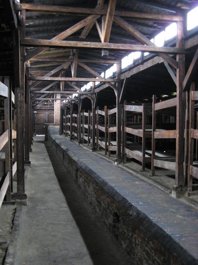 Why we fight: Auschwitz-Birkenau Voyage24